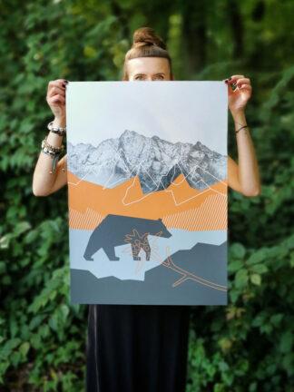 plakat góry dostojny niedźwiedź